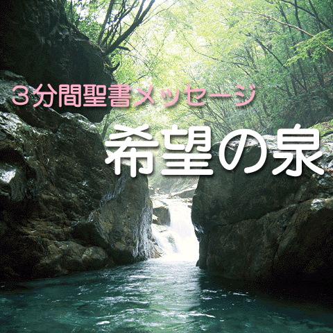 希望の泉カバー画像