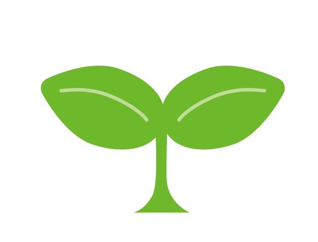 日々の法則126 生きている植物の法則