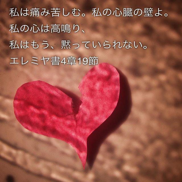 私は痛み苦しむ。私の心臓の壁よ。私の心は高鳴り、私はもう、黙っていられない。#エレミヤ書 4章19節 #みことば #預言 #聖書