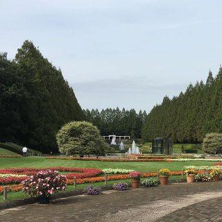 気持ちのいい遠足。絵になるね。#相模原公園