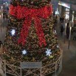 カウントダウン23 相模大野ステスクのクリスマスツリー